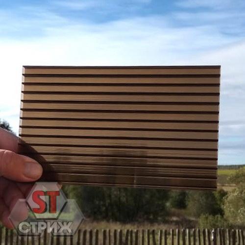 Сотовый поликарбонат 25 мм бронза
