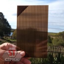 Сотовый поликарбонат премиум ROYALPLAST 6 мм бронза
