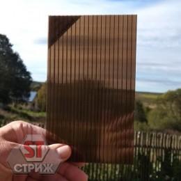 Сотовый поликарбонат 8 мм бронза